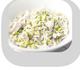 食事:分子栄養学に基づいた食事の知識を提供し、食事のルールを設定します。