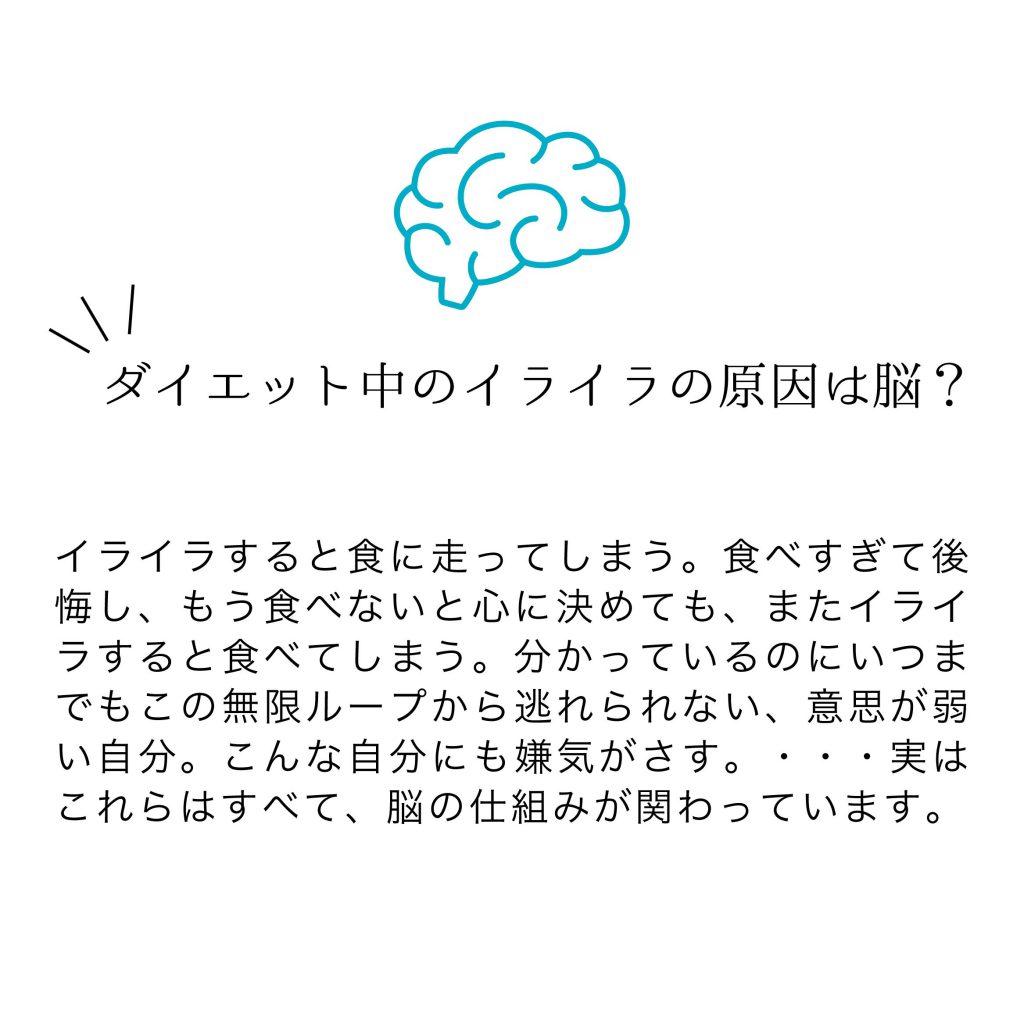 ダイエットするなら脳のことを知りましょう。 ダイエットセミナーのご案内の紹介画像3
